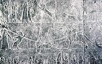 Assyria:  King Ashurbanipal slaying and sacrificing lions--in three friezes. Ninevah, Palace of  Ashurbanipal.  Photo '85.