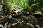 Waterfall and stream near Sook. Vancouver Island, British Columbia, Canada.