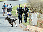 Vernon and Manchester police with a K9 evidence search for clothing items and a possible gun,  as school children who were just dropped off by a bus walk behind them, Wednesday, March 16, 2016, in Vernon. The incident happened around 2pm after a reported armed robbery of the VCA Animal Hospital at 155 Talcottville Road in Vernon. The suspect fled on foot through a residential area down to a large open area near the Hockanum River where he was apprehended by Police. Manchester Police assisted with a K9 team for a suspect who was believed to be armed. Clothing items were left behind in  at least two locations, including here, a short distance away on Pleasant View Road, which is the intersected street from the animal hospital. (Jim Michaud / Journal Inquirer)