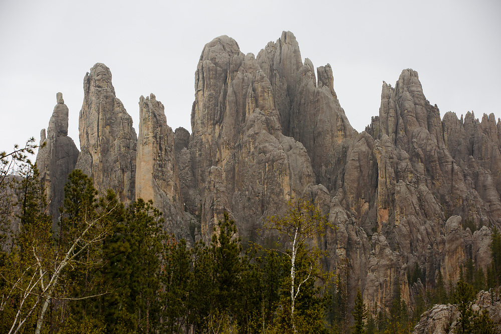 Cathedral Spires (granite spires) are pictured along the Needles Highway in Custer State Park in South Dakota on Sunday, May 21, 2017. (Photo by James Brosher)