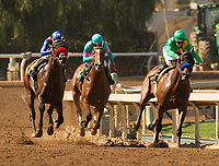 ARCADIA, CA  MARCH 11: #4 Mastery, ridden by Mike Smith, in the turn of the San Felipe Stakes  (Grade ll)  on March 11, 2017 at Santa Anita Park in Arcadia, CA. (Photo by Casey Phillips/Eclipse Sportswire/Getty Images)