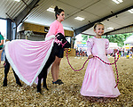 Princess Briella Turner of Indianola and calf also dressed as royalty before participating in the Bucket Calf event during the Warren County Fair.