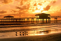 Ft. Myers beach pier in golden sunset on quiet evening -- birds wading, Florida