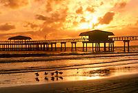 Ft. Myers beach pier in golden sunset on quiet evening -- birds wading, Florida