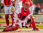 22 February 2019: Washington Nationals catcher Tres Barrera takes drills at home plate during a Spring Training workout at the Ballpark of the Palm Beaches in West Palm Beach, Florida. Mandatory Credit: Ed Wolfstein Photo *** RAW (NEF) Image File Available ***