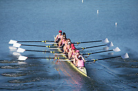 Stanford Crew W vs The Big Row, April 29, 2017