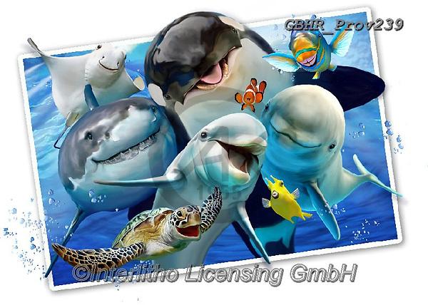 Howard, SELFIES, paintings+++++,GBHRPROV239,#selfies#, EVERYDAY ,maritime,sharks,dolphins ,puzzle,puzzles