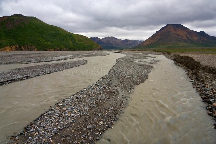 Tolkat River, Denali National Park, Alaska, a braided river of glacial deposits...