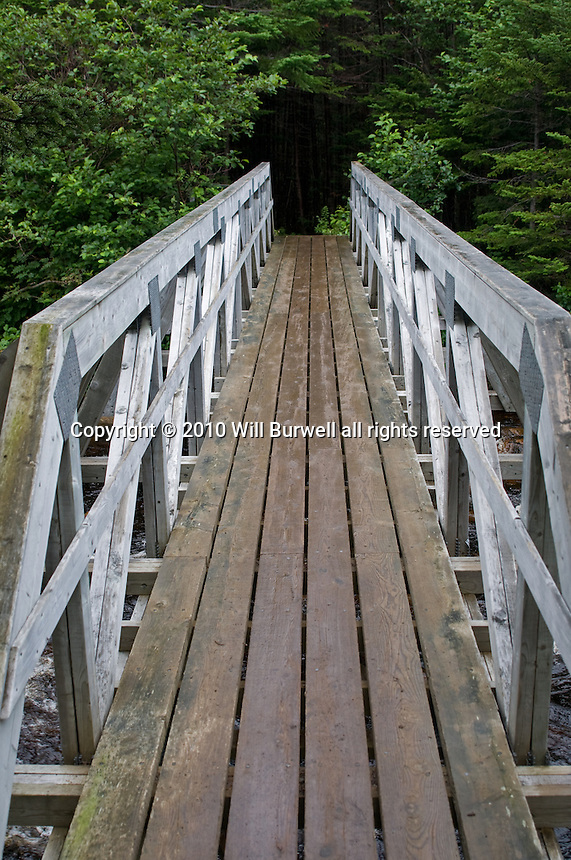 Foot Bridge Gros Morne Mountain Trail