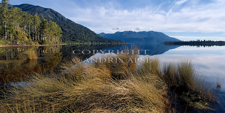 Lake Moana. Westland Region. New Zealand.