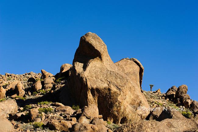 Rocks in Chukar country