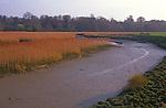 A084RA River Deben near Woodbridge Suffolk England