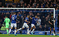 11th January 2020; Goodison Park, Liverpool, Merseyside, England; English Premier League Football, Everton versus Brighton and Hove Albion; Richarlison of Everton celebrates with team mate Dominic Calvert-Lewin after scoring to give his side a 1-0 lead after 37 minutes - Strictly Editorial Use Only. No use with unauthorized audio, video, data, fixture lists, club/league logos or 'live' services. Online in-match use limited to 120 images, no video emulation. No use in betting, games or single club/league/player publications