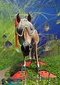 CHIARA,REALISTIC ANIMALS, REALISTISCHE TIERE, ANIMALES REALISTICOS, paintings+++++,USLGCHI488,#A#, EVERYDAY ,photos