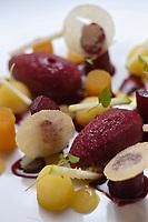 Europe/France/73/Savoie/Val d'Isère:  Effiloché d'agrumes, méringué au gingembre, sorbet yuzu et menthe, recette de Benoît Vidal. chef du restaurant: L'Atelier d'Edmond, au Fornet