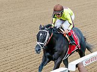08-12-17 Adirondack Stakes (II) (Saratoga)