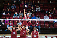 STANFORD, CA - March 3, 2018: Eric Beatty at Maples Pavilion. The Stanford Cardinal lost to Pepperdine, 3-0.