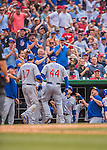 15 June 2016: Chicago Cubs first baseman Anthony Rizzo returns to the dugout with Cub fans cheering after hitting a home run against the Washington Nationals at Nationals Park in Washington, DC. The Cubs fell to the Nationals 5-4 in 12 innings in the rubber match of their 3-game series. Mandatory Credit: Ed Wolfstein Photo *** RAW (NEF) Image File Available ***