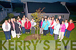 Members of Dromid ICA Guild planted a Lime Tree in the grounds of 'Our Lady of the Valley Church', Dromid, on Wednesday as part of their Centenary celebrations, Fr Keirns gave a blessing followed by mass. ..Ref Sinead