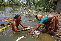 A family collect fish killed by Cyclone Aila. Thousands of people were displaced in Shyamnagar Upazila, Satkhira district after Cyclone Aila struck Bangladesh on 25/05/2009, triggering tidal surges and floods..