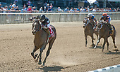 5th Tremont Stakes - He Hate Me