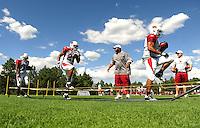 Aug. 1, 2009; Flagstaff, AZ, USA; Arizona Cardinals running backs conduct drills during training camp on the campus of Northern Arizona University. Mandatory Credit: Mark J. Rebilas-