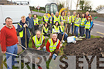 PLANTING: Members of Killorglin Tidy Towns Committee who gathered on Saturday morning to plant trees along the Iveragh Road.