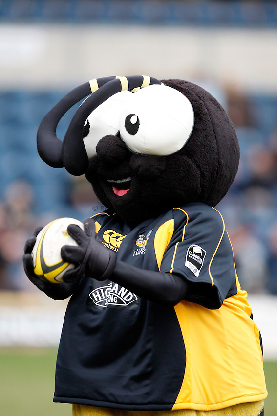 Photo: Richard Lane/Richard Lane Photography. .London Wasps v Bristol Rugby. Guinness Premiership. 23/02/3008. Wasps mascot, Sting.