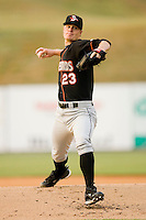Delmarva Shorebirds 2010