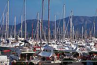Luxury pleasure boats in port at Calvi on the Mediterranean Sea, Corsica Island, France.