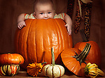 Baby boy sitting inside a big pumpkin. Fall season holidays Thanksgiving and Halloween humorous artistic still life.