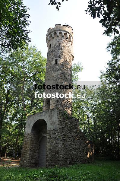 """Der Aussichtsturm """"Auf der Hemm"""" (1904) im Lonsheimer Wald"""