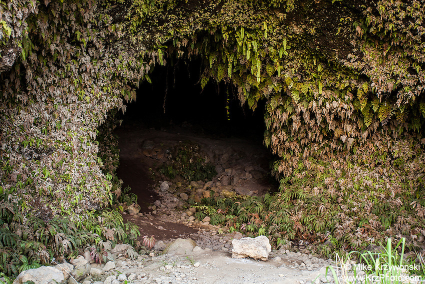 Cave #3 along Old Mamalahoa Hwy., Big Island