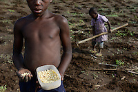 MOZAMBIQUE, Moatize, the village Chipanga was resettled by VALE coal mining, a brazil company, the new settlement Cateme built by Vale is 40 km far, Jose and his family is still planting maize on their old farm in Chipanga, but they are not sure if the can harvest it breore the bulldozer will come again / MOSAMBIK, Moatize, fuer die Erweiterung der Kohlemine des brasilianischen Unternehmens VALE wird die Ortschaft Chipanga abgerissen, die Bewohner werden 40 km von Moatize enfernt nach Cateme umgesiedelt, Jose und seine Familie pflanzen Mais solange es geht