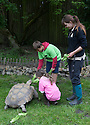 01/07/16<br /> <br /> Freya Kirkpatrick (8) and her cousin Jasper Peterken (9) help to feed the animals at Peak Wildlife Park, as they become  'zoo keepers for the day' at the Staffordshire attraction.