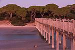 Parque natural de la Bahía de Cádiz, Rio San Pedro, Puerto Real, Costa de la Luz, Cadiz, Andalucia, Andalusia, Andalusien, Spain, Spanien