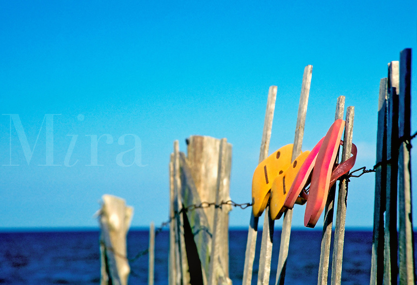 Flip flops hanging on a beach dune fence, Wellafleet, Cape Cod, MA