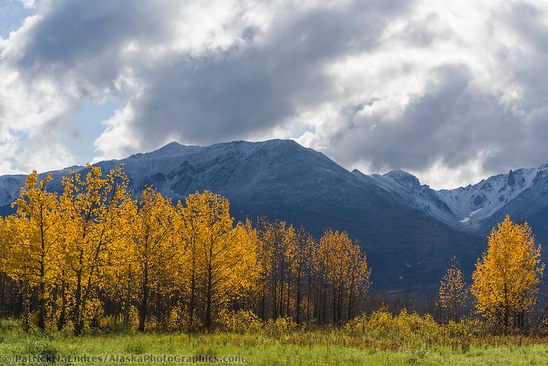 View of the Kigluaik mountains looking south from Pilgrim Hot springs, Seward Peninsula, western Arctic, Alaska.