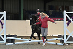 30/12/2018 - Unaffiliated showjumping extravaganza - Brook Farm TC