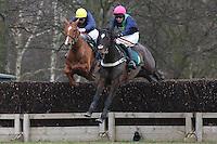 Horse Racing 2012-02