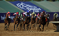 DEL MAR, CA - NOVEMBER 04: The pack rounds the turn during the 14 Hands Winery Breeders' Cup race on Day 2 of the 2017 Breeders' Cup World Championships at Del Mar Racing Club on November 4, 2017 in Del Mar, California. (Photo by Jamey Price/Eclipse Sportswire/Breeders Cup)