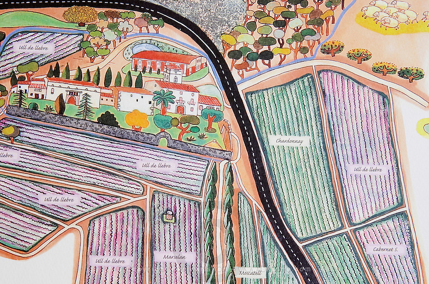 Map over the vineyards. Albet i Noya. Penedes Catalonia Spain