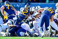 Morgantown, WV - NOV 10, 2018: West Virginia Mountaineers running back Martell Pettaway (32) scores a goaline touchdown late in the second quarter of game between West Virginia and TCU at Mountaineer Field at Milan Puskar Stadium Morgantown, West Virginia. (Photo by Phil Peters/Media Images International)