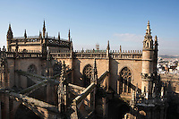 High angle view of buttresses, Seville Cathedral, Andalucia, Spain, pictured on December 27, 2006, in the winter morning light. Seville Cathedral is the largest Gothic building in the world. It was converted from the original 12th century Almohad Mosque on this site during the 16th century and the original Moorish entrance court and Giralda Minaret are both integrated in the cathedral. Inside is the tomb of the explorer Christopher Columbus (1451-1506). Picture by Manuel Cohen