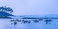 Panoramic photo of traditional fishing boats at sunrise at Mirissa Beach, South Coast of Sri Lanka, Asia. This is a panoramic photo of traditional fishing boats at sunrise Mirissa Beach, Sri Lanka, Asia.