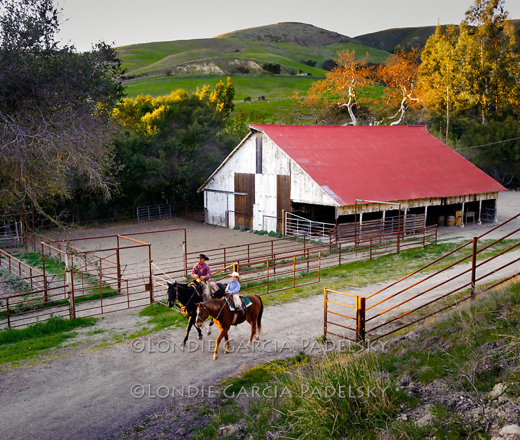 Father and son cowboys ride horses by the barn.  San Luis Obispo, California