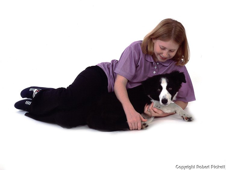 Young girl, laying with puppy border collie dog, 12 years old, studio, white background, cut out, pet, domestic