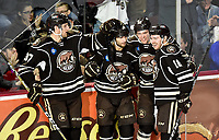 HERSHEY, PA - JANUARY 05: Hershey Bears defenseman Joey Leach (37), left wing Shane Gersich (10), right wing Beck Malenstyn (13), and center Garrett Pilon (18) celebrate after a second period goal during the Grand Rapids Griffins vs. Hershey Bears AHL game at the Giant Center in Hershey, PA. (Photo by Randy Litzinger/Icon Sportswire)