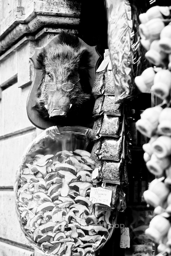 Boar Head with Glasses outside a Condiment Shop in Venice, Italy