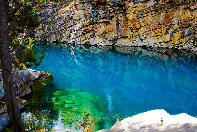 The beautiful azure waters of Horseshoe Lake in Jasper National Park Alberta Canada. I would call it Lapis Lazuli Lake. It's a real gem.